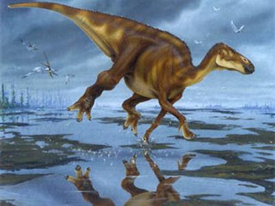Картинки по запросу Орнитоподы