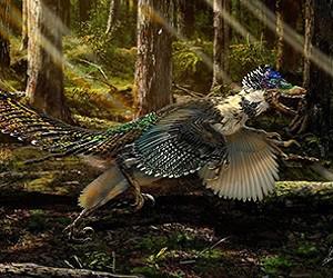 uchenye_nashli_pernatogo_dinozavra