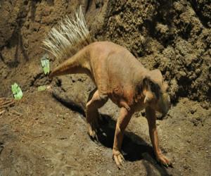 sushhestvovali-li-dinozavry-v-rossii