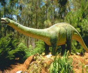 interesnoe_pro_dinozavrov_stalo_izvestno_uchyonym